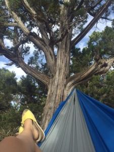 always bring a hammock